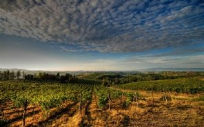 Tuscan Style - tra le migliori app si Open Toscana